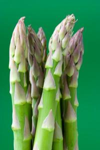 Asparagus_183111300x4501